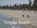 Tongaci Beach